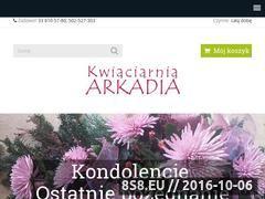 Miniaturka domeny www.arkadia.ig.pl