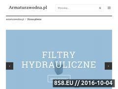 Miniaturka domeny www.armaturawodna.pl