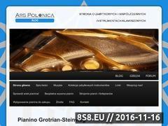 Miniaturka arspolonica.ocross.net (Zabytkowe instrumenty muzyczne - Ars Polonica)