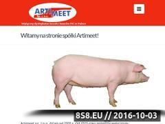 Miniaturka domeny artimeet.pl