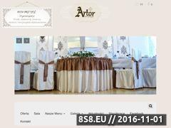 Miniaturka domeny www.artor.pl