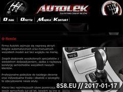 Miniaturka domeny www.auto-lek.pl