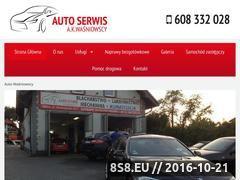 Miniaturka domeny auto-wasniowscy.pl