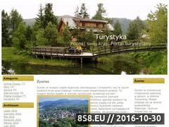 Miniaturka autobusyonline.pl (Bilety autokarowe - bilet autokarowy)