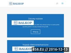 Miniaturka domeny www.balkop.pl