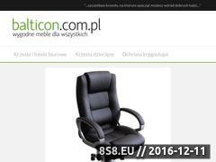 Miniaturka domeny www.balticon.com.pl