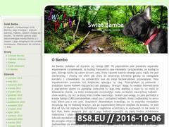 Miniaturka domeny bambo.info