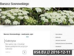 Miniaturka barszcz-sosnowskiego.pl (Barszcz Sosnowskiego)