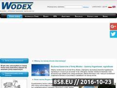 Miniaturka domeny baseny-wodex.pl