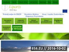 Miniaturka domeny basliparis.com.pl