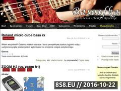 Miniaturka Największy portal dla basistów (basoofka.net)