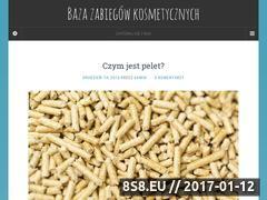 Miniaturka domeny www.baza-spa.pl