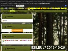 Miniaturka domeny bazanci-swiat.com.pl