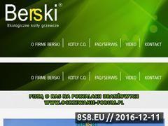Miniaturka domeny www.berski.pl