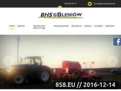 Miniaturka domeny www.bhs-goleniow.pl
