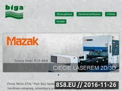 Miniaturka domeny www.biga.com.pl