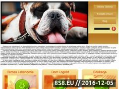 Miniaturka domeny biggo.pl
