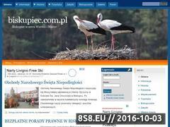 Miniaturka domeny biskupiec.com.pl