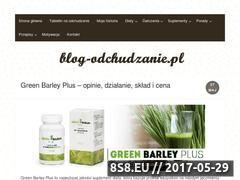 Miniaturka blog-odchudzanie.pl (Blog o odchudzaniu)