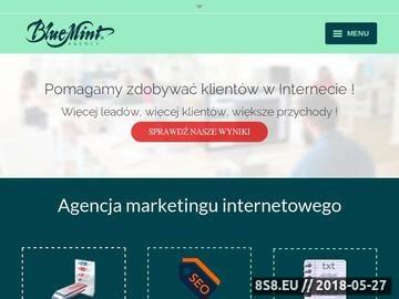 Zrzut strony Agencja digital marketing