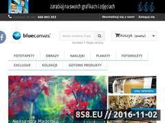 Miniaturka domeny bluecanvas.pl
