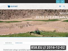 Miniaturka domeny www.blueds.pl