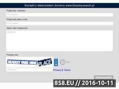 Miniaturka domeny www.blueskysearch.pl