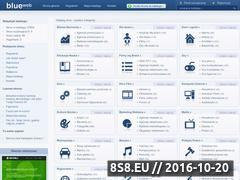 Miniaturka domeny blueweb.pl