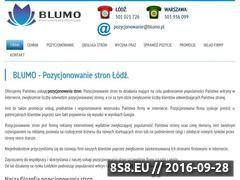 Miniaturka www.blumo.pl (Pozycjonowanie stron, tworzenie stron i projektowanie)