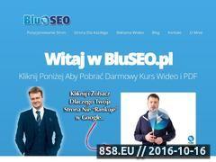 Miniaturka Pozycjonowanie stron WWW (bluseo.pl)