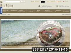 Miniaturka domeny www.bluzone.com.pl