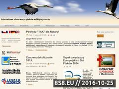 Miniaturka bociany.miedzyrzecze.org.pl (Internetowa obserwacja ptaków w Międzyrzeczu)