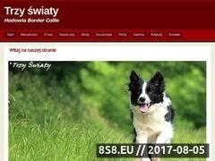 Miniaturka domeny www.border.com.pl
