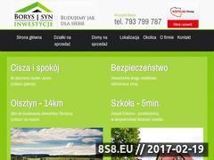 Miniaturka domeny www.borysisyn.pl
