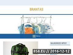 Miniaturka domeny brantas.com.pl