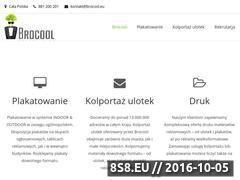 Miniaturka www.brocool.eu (Kolportaż ulotek, plakatowanie i hostessy)
