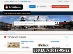 Miniaturka domeny www.brzesko.org