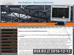 Miniaturka domeny www.budberg.pl