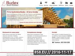 Miniaturka domeny budex.info