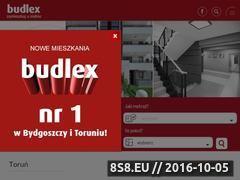 Miniaturka domeny www.budlex.pl