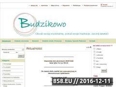 Miniaturka domeny www.budzikowo.pl