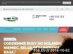 Miniaturka busydoholandii.org (Bilety do Holandii, Niemiec, Belgii i Polski.)