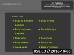 Miniaturka domeny butysiatkarskie.pl