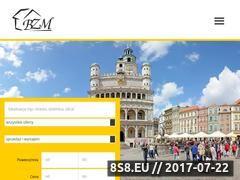 Miniaturka domeny www.bzm.pl