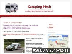 Miniaturka domeny www.campingmruk.pl
