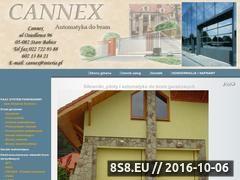 Miniaturka domeny www.cannex.pl