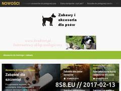 Miniaturka domeny catmadness.com.pl