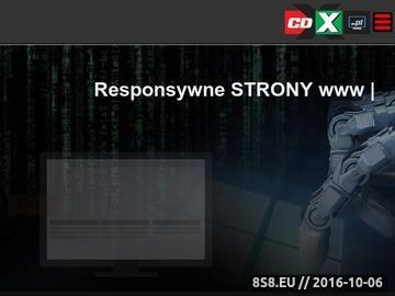 Zrzut strony Profesjonalne tworzenie stron WWW Warszawa
