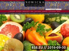 Miniaturka domeny www.centrum-dietetyczne.pl