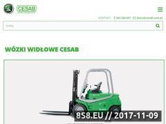 Miniaturka domeny cesab.pl
